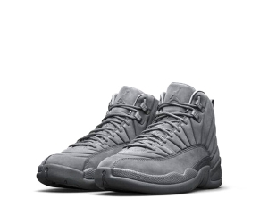 nike air jordan 12 xii public school new york psny grey 130690-003 horizon premium 27432-002 p