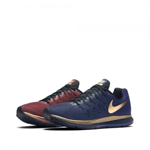 NIKE AIR ZOOM PEGASUS 33 LE MICHAEL JOHNSON